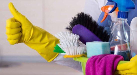 rengøringsartikler